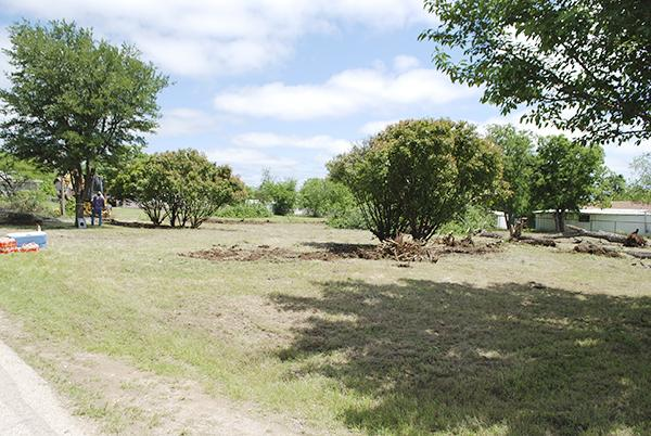 The results after Saturday's cleanup shows much brush was trimmed and cleared.  Courtesy / Terry McDaniel